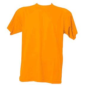 Camiseta tecnica AR1