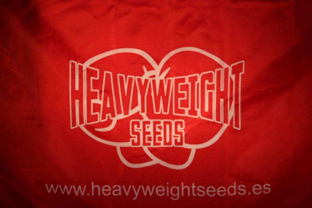 mochilas personalizadas heavyweight